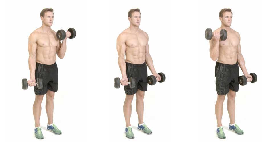 rutina de biceps en casa con mancuernas