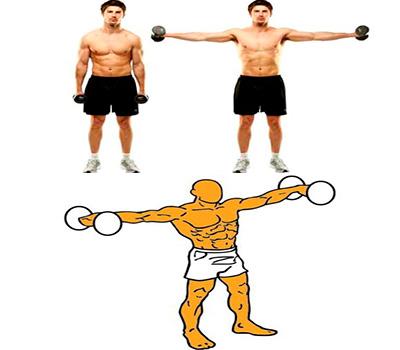 imagen de como realizar elevaciones laterales para hombros